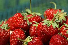 Sweet Summer Strawberries