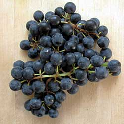 coronationgrapes